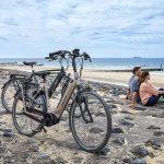 Elektrische Fietsen Gazelle e-bike